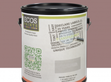 Ecos Air Purifying Paint